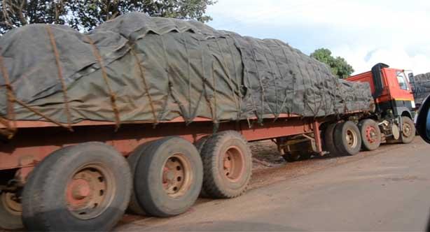 44 maize trucks arrive in Malawi