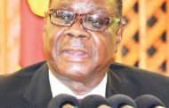 Peter Mutharika laments justice delivery delays