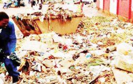 Mzuzu councillors dump waste at director's office