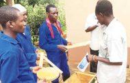 Honey producers exchange skills