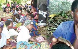 20 still missing in boat accident