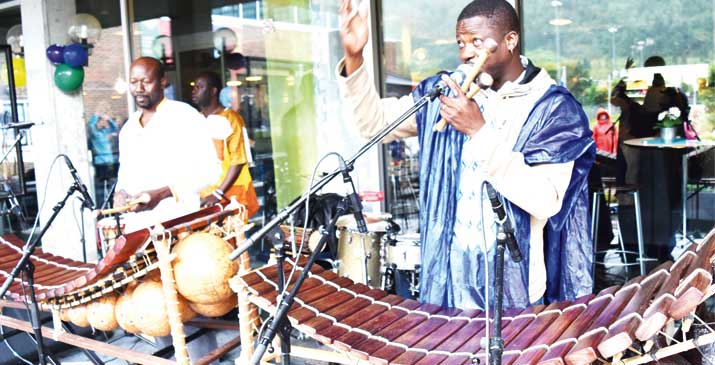 Burkina Faso star urges Africa to preserve traditional instruments
