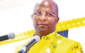 Atupele Muluzi owns DPP projects