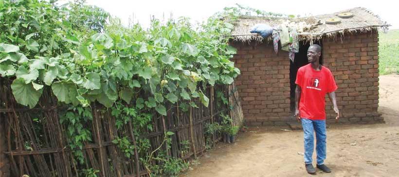 Home-grown food security targets 150,000