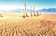 Drought-hit Cape Town rejoices at rainfall