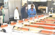'Political will key to industrialisation'