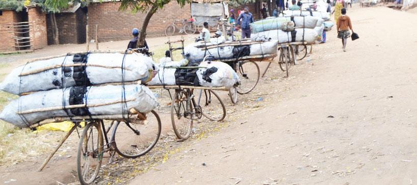 Long, snaking cycles for Zambian honey
