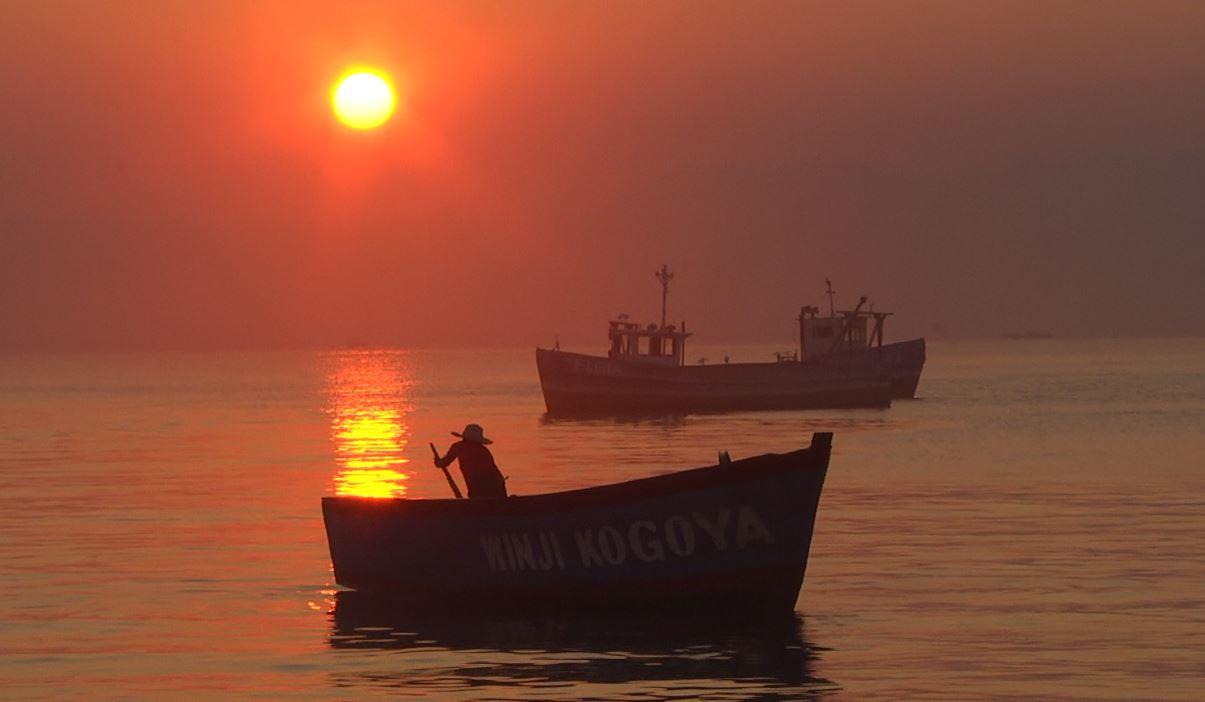 More innovative gear, dwindling fish stocks