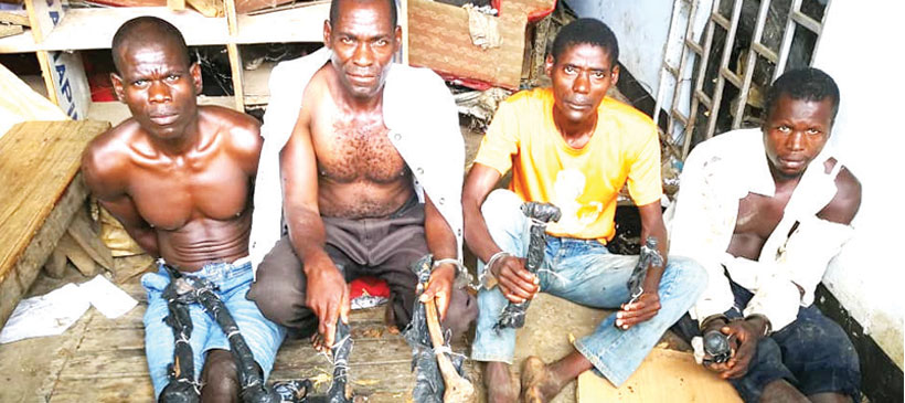 Village head, 4 men arrested for possessing human bones