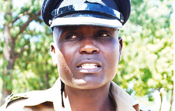 Lilongwe, Nsanje top in violence